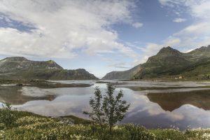 14-2016-Ago-Norvegia-Finlandia 372-Franco-Bruni