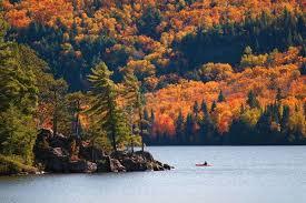 """L'autunno è il momento ideale per visitare Algonquin Park, meta scelta da migliaia di visitatori da tutto il mondo in questo periodo dell'anno per le infinite opportunità che offre di ammirare lo spettacolo del fall foliage. L'Algonquin Park è il parco provinciale più antico del Canada, la cui """"nascita"""" risale al 1893, ma è relativamente recente la scoperta da parte del turismo di massa  che ne ha fatto un vero """"must"""" per le vacanze a tema natura."""