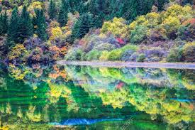 """La Valle di Jiuzhaigou (ovvero """"Valle dei Nove Villaggi"""") si trova presso la prefettura di Nanping, 450 Km a nord della città di Chengdu. Il nome trae origine dalla presenza, all'interno dell'area, di villaggi abitati da genti di etnia tibetana, le quali da sempre considerano sacri i corsi d'acqua e le montagne della zona. Infatti, proprio grazie all'abbondanza di corsi d'acqua, laghi, cascate e specie locali di flora e fauna, nel 1997 l'intera area è stata premiata dell'UNESCO con il titolo di Man and Biosphere Reserve, e nel 1992 è entrata a far parte della lista del patrimonio mondiale da salvaguardare."""
