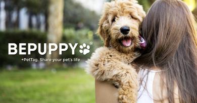 Nasce il +PetTag. Condividi la vita dei tuoi animali domestici con un click
