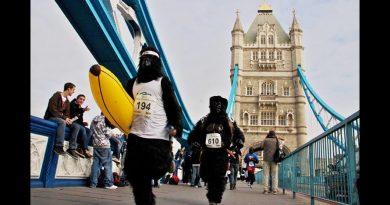 """Estinzione? Londra dice """"No"""" con la Gorilla Run"""
