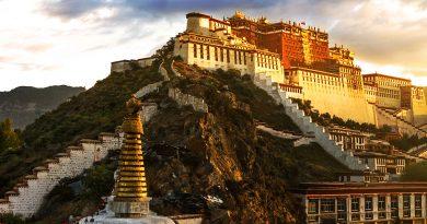 Mirabile Tibet – L'intervista al Presidente Marco Scarinci