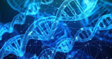 Ossigeno-ozono terapia. La nuova medicina senza farmaci.